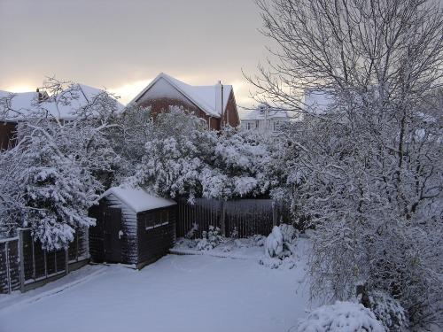Snowy_december_001