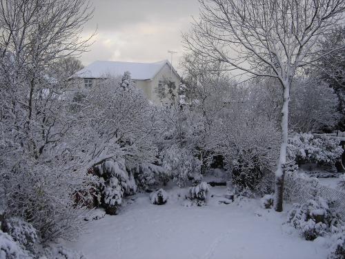 Snowy_december_002