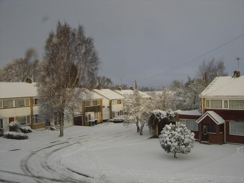 Snowy_december_004